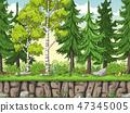 Seamless Cartoon Forest Background 47345005