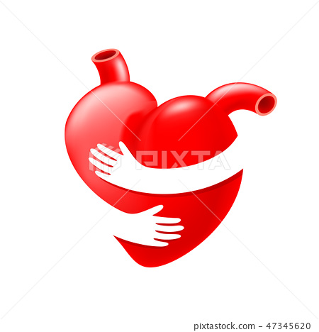 Red heart with hand embrace.  47345620