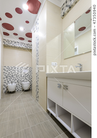 Bathroom interior, locker with mirror, toilet and bidet 47350940