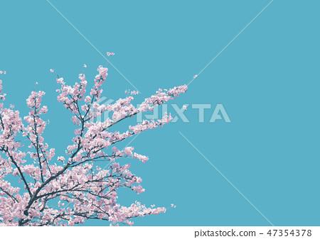 벚꽃 벚꽃 나무 푸른 하늘 47354378
