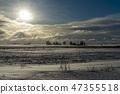Cold bleak snowy winter landscape 47355518