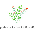 Simple bouquet vector with spring garden blooming flowers illustration. Fashion floral springtime 47365609