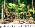 EARTH writing made from wooden letters in the forest 47371113