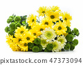 Bouquet of fresh spring flowers isolated on white. 47373094
