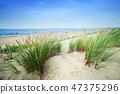 ocean, sea, beach 47375296