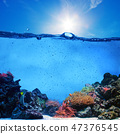 Underwater scene. Coral reef, blue sunny sky and clean water 47376545