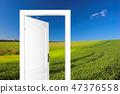 Door to new world 47376558