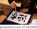 calligraphy 47381888