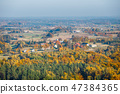 aerial view of the autumn forest 47384365