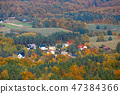 aerial view of the autumn forest 47384366