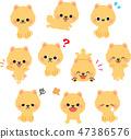 博美犬插画集 47386576