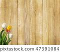 背景 - 牆 - 板 - 木紋 - 棕色 - 鬱金香 - 春天 47391084