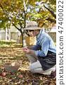 농부,농업,시골,청년,귀농,수확,재배,과일,사과 47400022