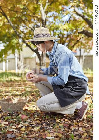 農民,農業,農村,年輕,耳朵,收穫,種植,水果,蘋果 47400023