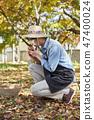 농부,농업,시골,청년,귀농,수확,재배,과일,사과 47400024