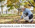 농부,농업,시골,청년,귀농,수확,재배,과일,사과 47400028
