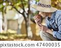 농부,농업,시골,청년,귀농,수확,재배,과일,사과 47400035