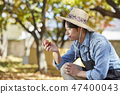 농부,농업,시골,청년,귀농,수확,재배,과일,사과 47400043