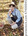 농부,농업,시골,청년,귀농,수확,재배,과일,사과 47400045
