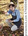 농부,농업,시골,청년,귀농,수확,재배,과일,사과 47400049