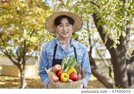 가을,농부,시골,청년,수확,재배,야채,채소,과일,유기농 47400050