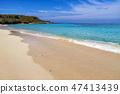 Exotic paradise  47413439