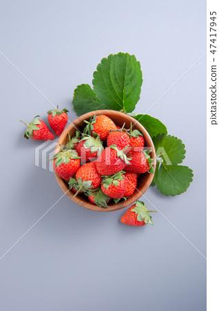 草瓜水水果冬天樹碗靛藍灰色背景草莓草莓草莓 47417945
