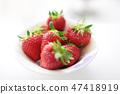 새빨간 딸기 익은 여자 봉 47418919