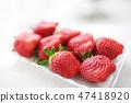 새빨간 딸기 익은 여자 봉 47418920