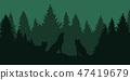 wolf forest animal 47419679