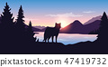 wolf looks into the distance of the mountain landscape 47419732