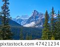 캐나다 로키 밴프 국립 공원 모레 인 호수로 향하는 길에서의 풍경 47421234