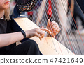 Closeup of a beautiful girl playing the harp. Detail of a woman playing the harp outdoors 47421649