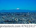 Mt. Fuji from Ebisu Garden Place 47422417