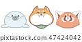 cute animal seal shiba redpanda illustration 47424042