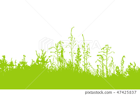 Green grass silhouette isolated on white 47425837