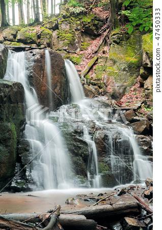 beautiful waterfall among the forest 47450333