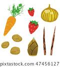 Spring vegetable vegetable illustration set 2 - spring vegetables set 2 - 47456127