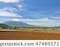 모내기 전에 시골 풍경과 후지산 47460372