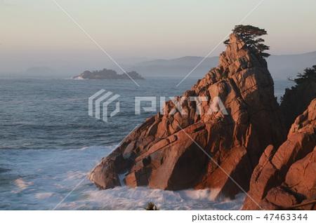 새벽의 바다의 풍경 47463344