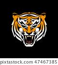snarling tiger 47467385