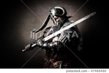 Portrait of a Viking 47468480