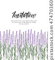 Natural background with lavender 47470360