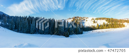 panorama of a beautiful winter landscape 47472705