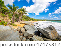 Exotic Caribbean shore of Puerto Rico beach 47475812