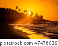 Tropical sunset at the beach with palms 47476039