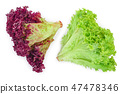 fresh red coral and green salad or lettuce isolated on the white background. Top view. Flat lay 47478346