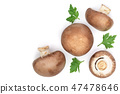 Fresh champignon mushrooms with parsley isolated on white background with copy space for your text 47478646