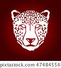 动物 猎豹 图形 47484556