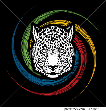 Cheetah Face graphic vector. 47484560